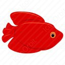 Xiphophorus Maculatus Red Fish icon